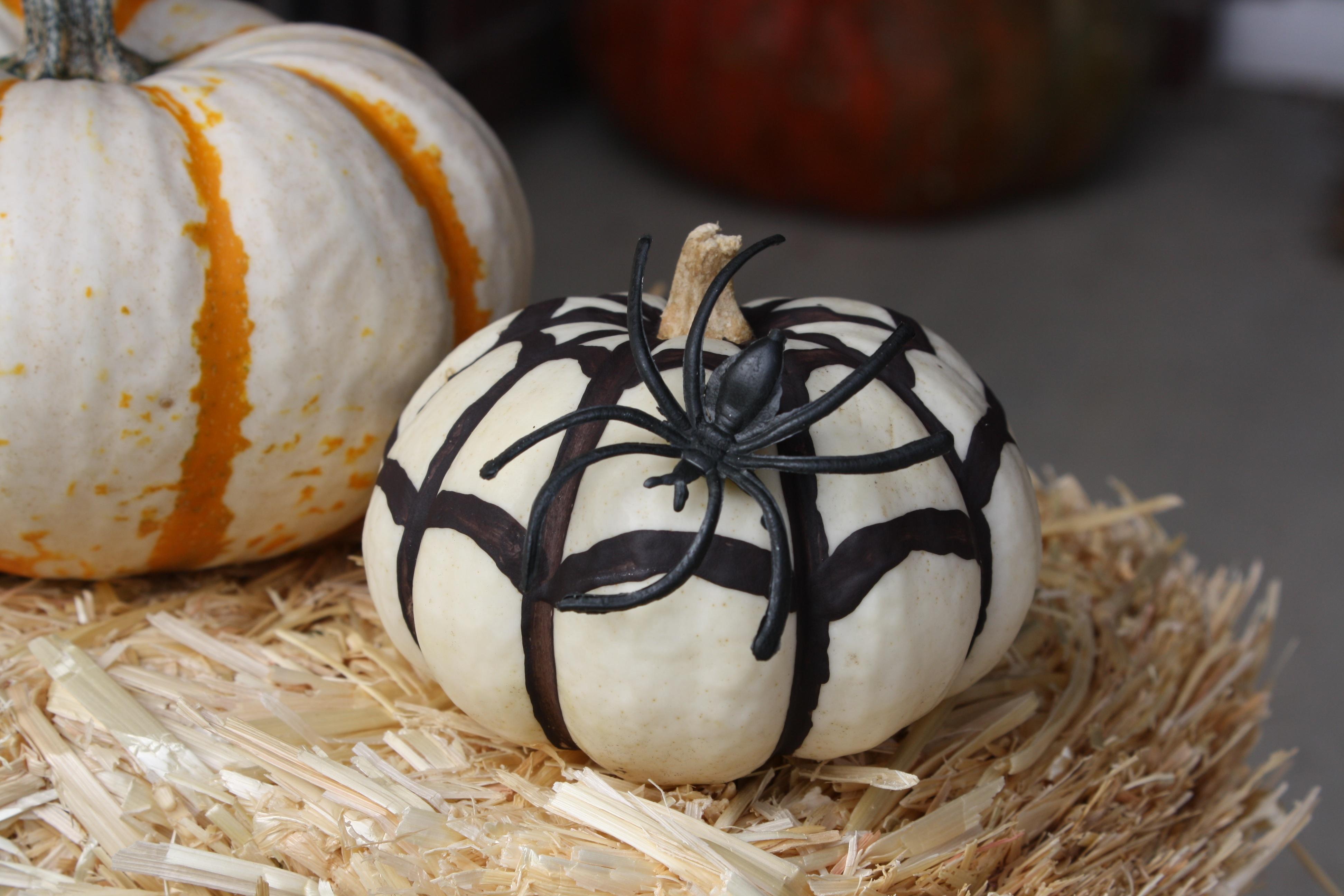 Mini pumpkin decorating ideas - The Lines Aren T Perfect On My Mini Chevron Pumpkin But It Looks Cute