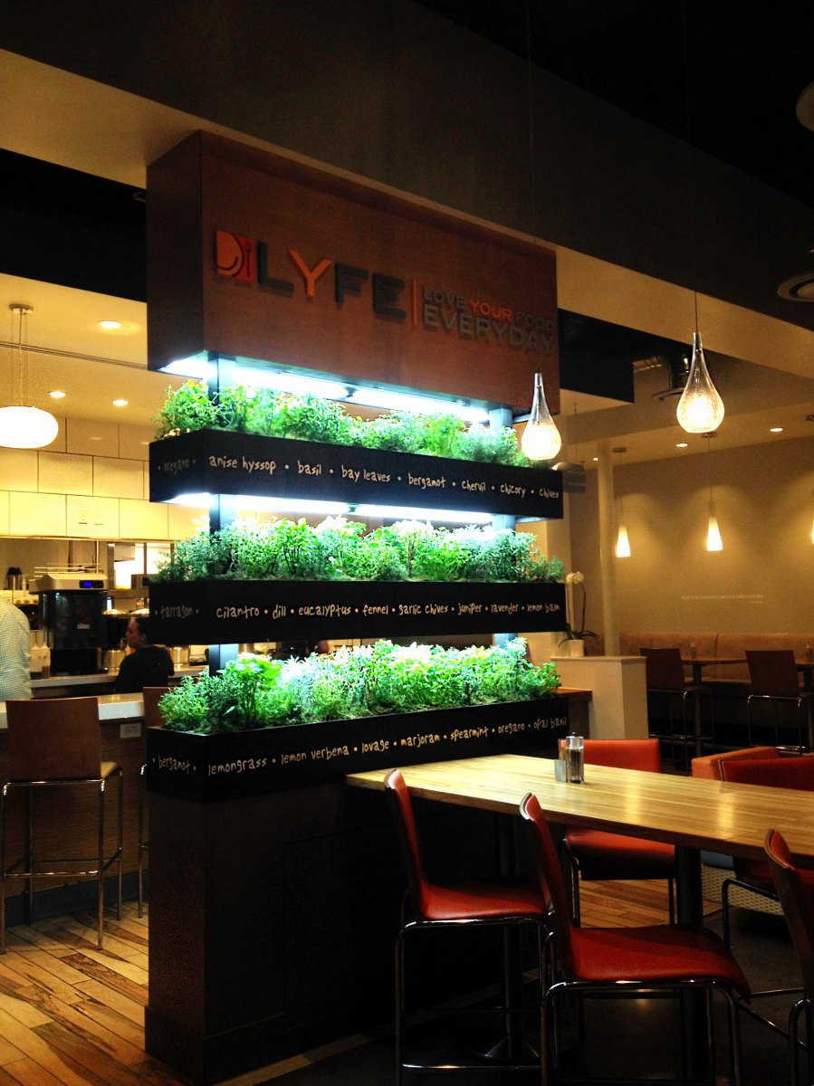 LYFE Kitchen restaurant review